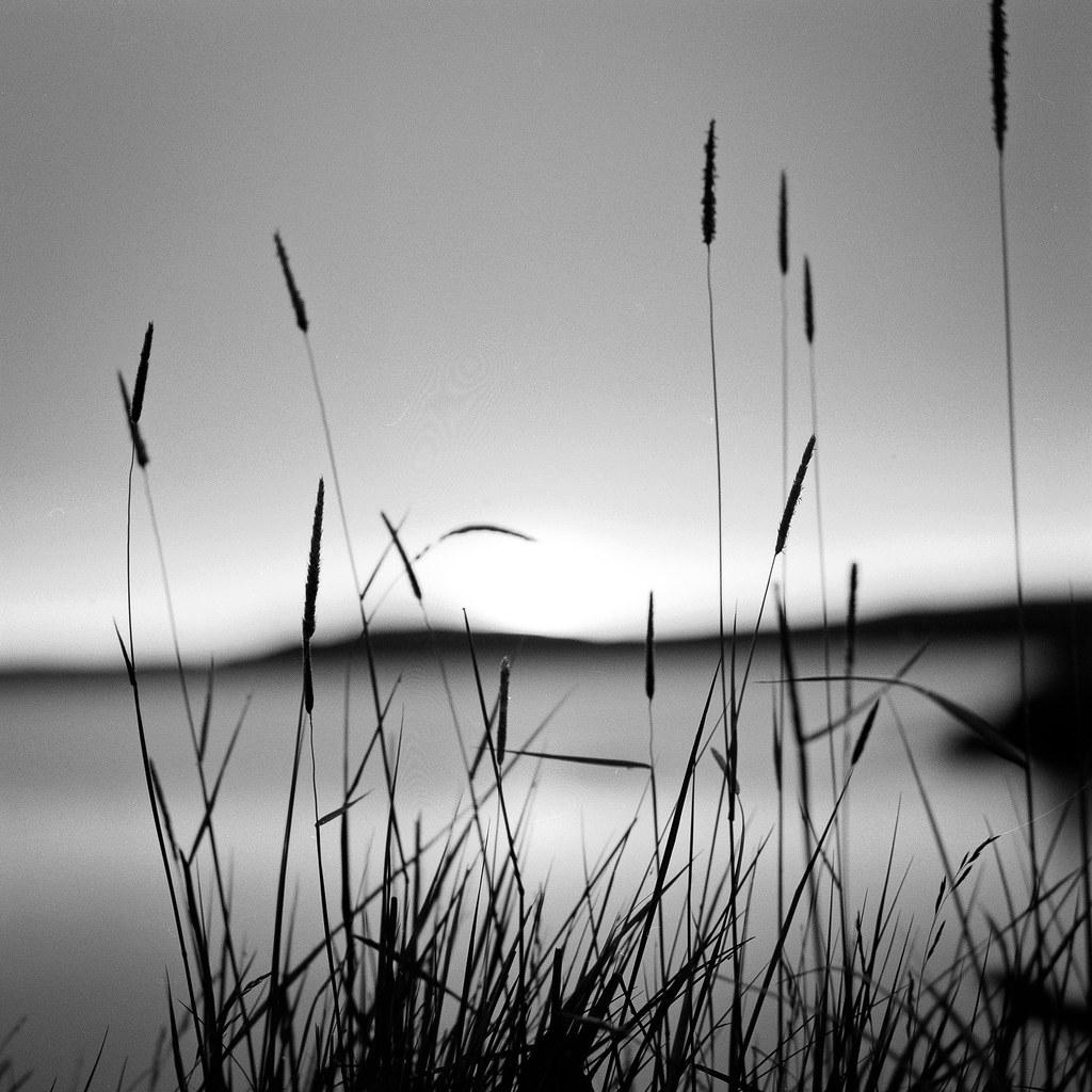 "Image titled ""Silhouette, Mývatn, Iceland."""
