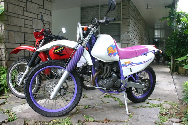 ttr250_2008