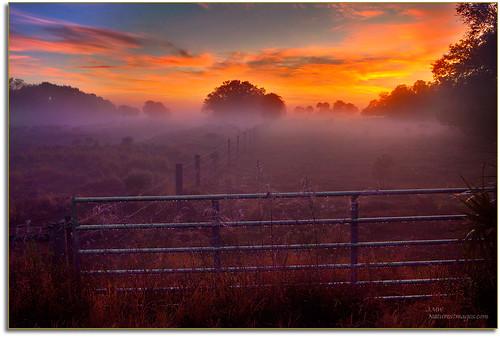 landscapes sunrises professionalphotographer oldflorida floridaimages photoworkshops phototours wildlifemanagementareas phototourguide jmwnaturesimagescom dynamichdr5 audiovisualphotopresentations