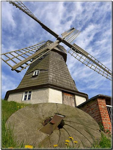 Holländer-Windmühle Jerichow