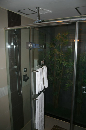 2011-11-18 - Xi'an - Motel 168 - 03 - Bathroom shower and forest