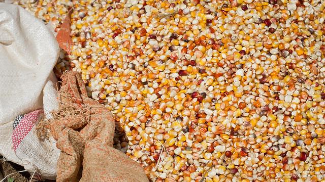 Maize, Market, Mekane Eyesus, Ethiopia, 2011