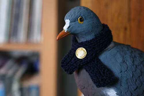 Pigeon Scarf