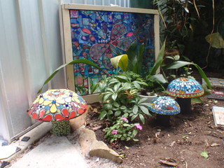 Garden of Mushrooms