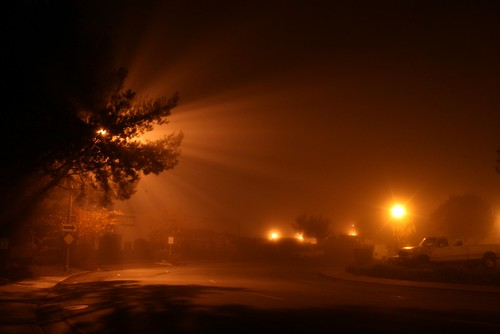 Foggy Night ( Pani vizhum Iravu )