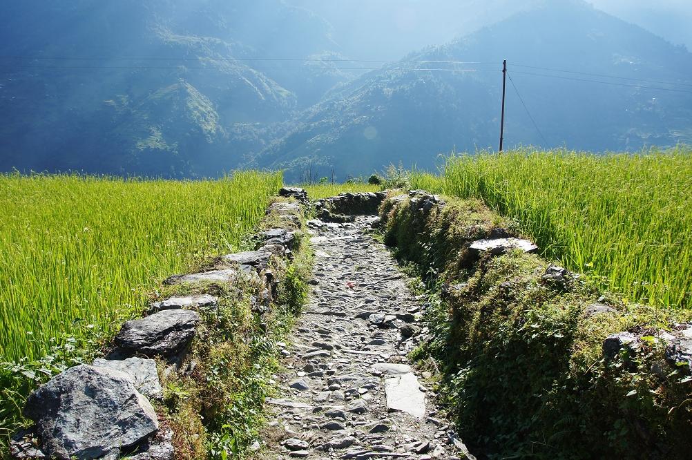 1006_Nepal_064