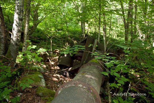 Abandoned Penstock & Turbine in Westmore (looking uphill).jpg