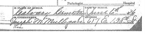 Undertaker crop from GGM Annie Tierney's Death Certificate