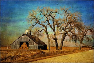 Barn with Bales