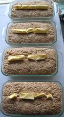 Oatmeal Sourdough 1