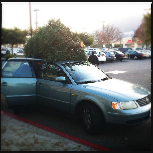 Station wagon with Christmas tree