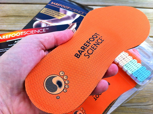 Barefoot Science Inserts - Guinea Pig