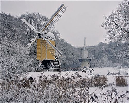 Dutch Windmills in Winter