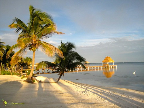 6532248077 bdf4f85bd3 Belizean Cove Estates   The Perfect Vacation Rental in Belize