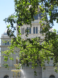 The Royal Exhibition Building Shrouded in Foliage - Melbourne