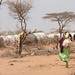 Houses of Dadaab