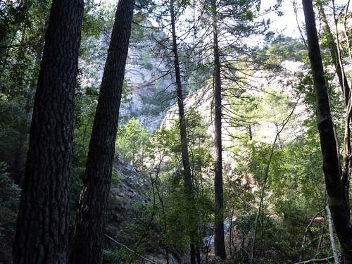 Fin de remontée du Velacu : le ravin vers le Tafonu di u Cumpuleddu (Trou de la Bombe)