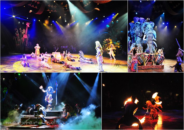 Festival of the Lion King (1)