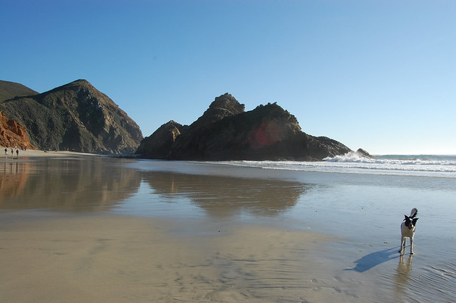 Pfeiffer Beach Big Sur