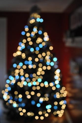 Christmas Tree | 2011