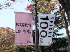 fes2011-成蹊大学-欅祭-01