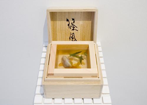 Goldfish Sake: Shinokaze, Riusuke Fukahori - Goldfish Salvation