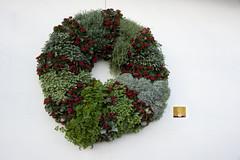 tree(0.0), christmas tree(0.0), art(1.0), flower(1.0), green(1.0), christmas(1.0), wreath(1.0),