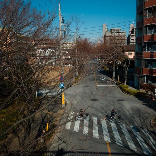Shadow Self Overlooking Minami Kasai Tokyo, My Neighborhood