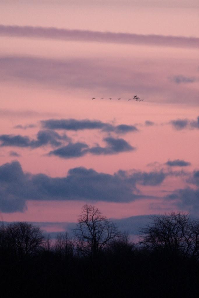 20120108_175146_landscape_edit