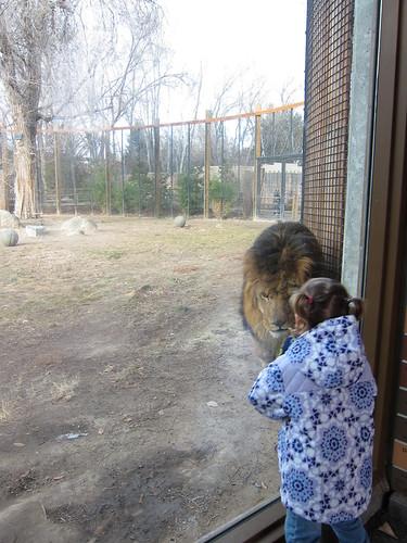 Zoo Boise 1/8/12