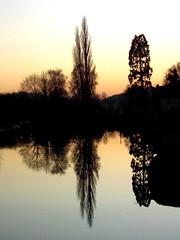 14th Jan 2012: Sprotbrough