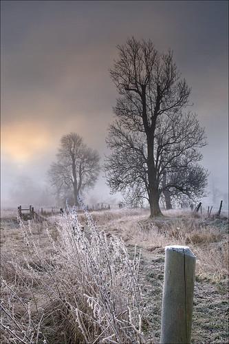 winter mist fog sunrise dawn frost wiltshire avebury silbury westkennett