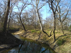 Rowlett Creek, Bob Woodruff Park