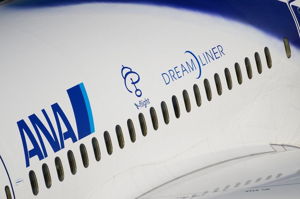 ANA B787 JA801's Logo
