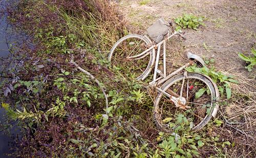 桜川 乗り捨て自転車
