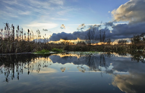 sunset reflection clouds reeds landscape pond day sundown cloudy naturereserve 1022mm westmidlands solihull brueton canon7d
