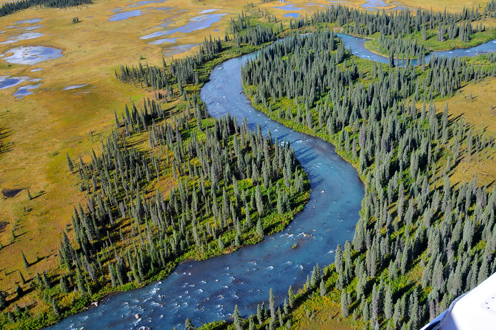 River, Rapids