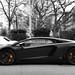 A Black One. by tWm.