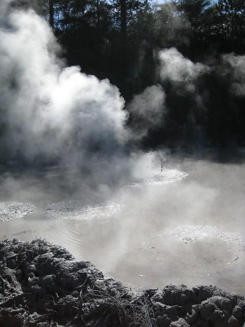 Boiling Mud, Rotorua, New Zealand