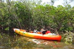 cool20160524 002_kayak_gulf