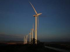 """Peña Alta"" wind park at sunset"