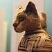 Small photo of Mummified Cat