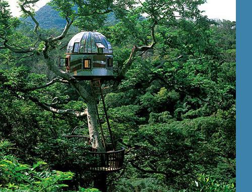 treehouse_005