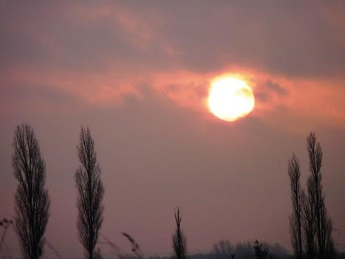 Dear sun...