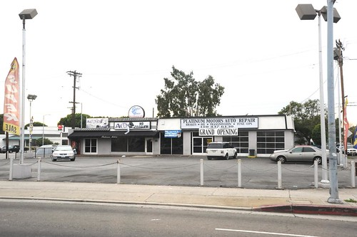Platinum Motors Venice
