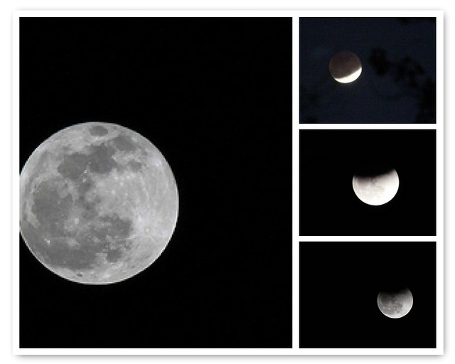 The Moon Eclipse