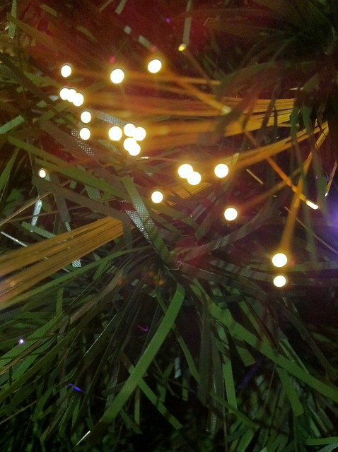 Fibra óptica entre ramas