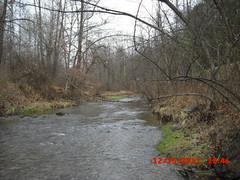 Dump Creek