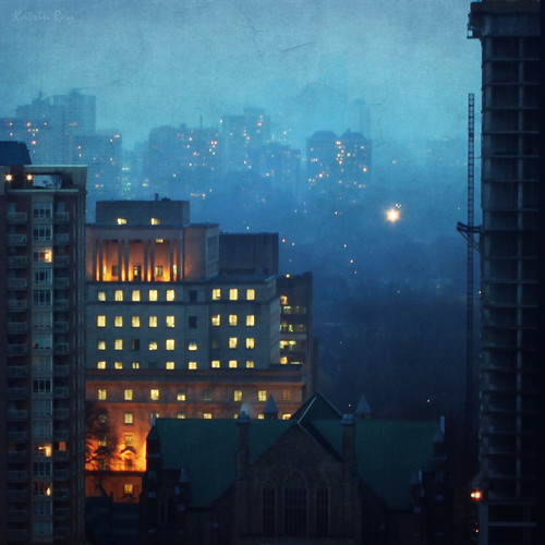 Toronto's Mixed Forest. Blue Mist of December by Katrin Ray