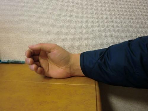 着る羽毛布団20111222029-029